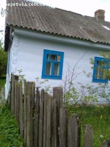 Продаю будинок в с.Цвітоха