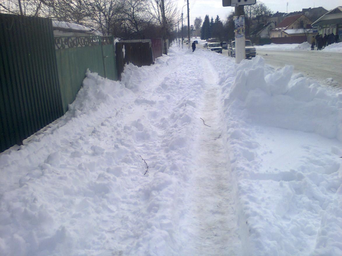 Перший «сніжок»