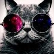 Barga_231 аватар