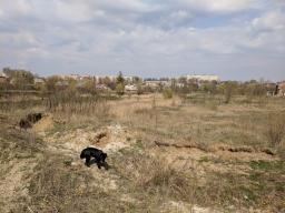 Весна у Шепетівці 2018 2018-04-16