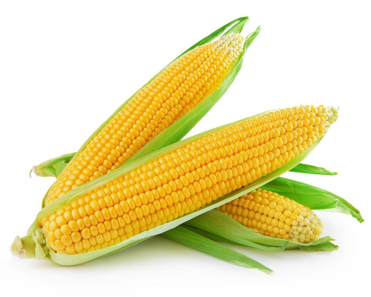 Збанкрутіла компанія з Шепетівки стягує з держкорпорації 52 млн. грн за кукурудзу