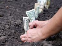 4,5 мільйони грн отримала Шепетівська міська рада за продаж 8 земельних ділянок