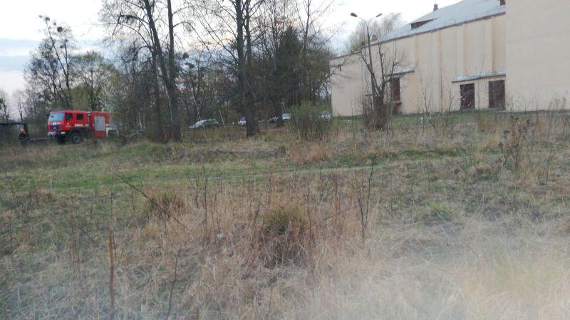 Неподалік школи-гімназії виявили обгорілий труп дівчини