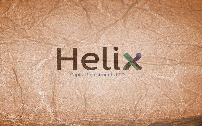 Helix. Чергова піраміда чи велика інвестиційна компанія?