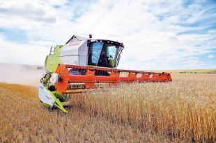 Завершуються жнива ранніх зернових та зернобобових культур