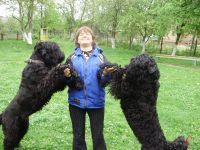 Ольга Бєляєва: «Навчити танцювати можна будь-якого собаку»